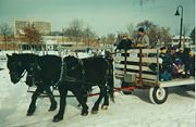 Winter wagon ride in Matthews Park ca 1990.